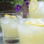 Skinny Lemonade