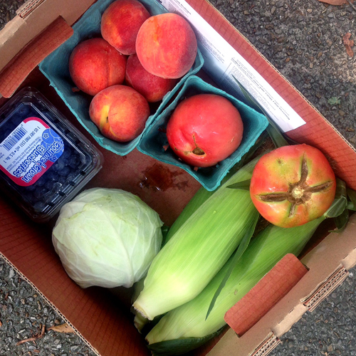 IMG_sproutbox