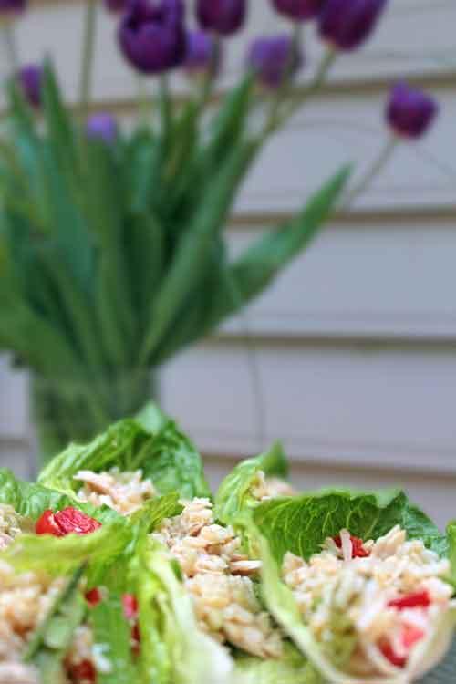 esame Chicken Salad Wraps