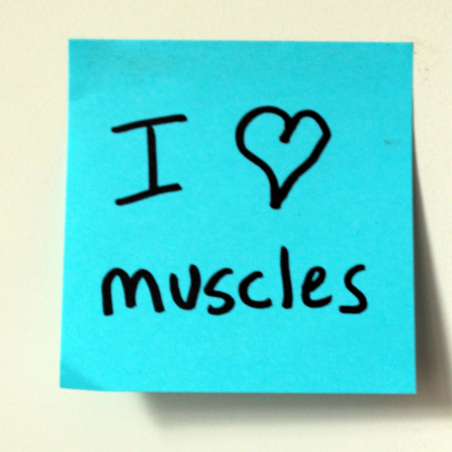 Ten reasons you should care about muscle maintenance