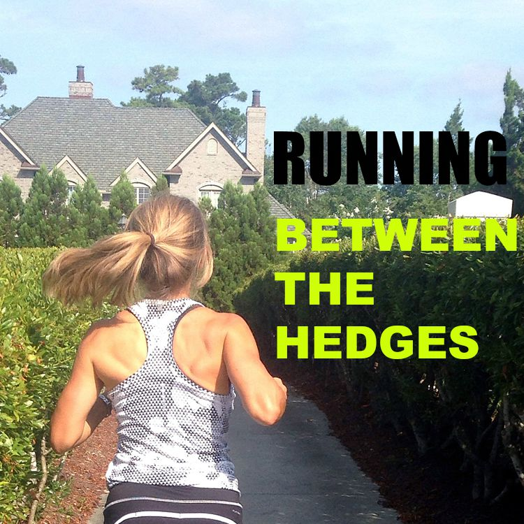 running between the hedges.; a training plan to improve speed