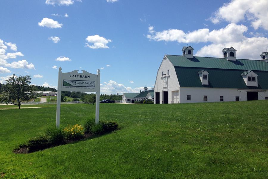 Pinelands-farm