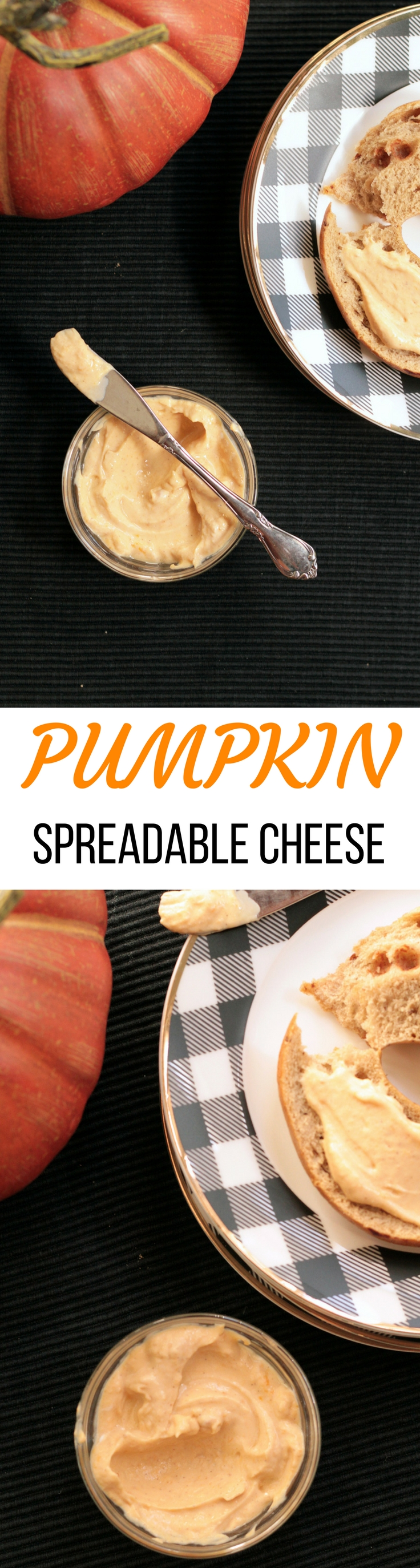 Pumpkin Spreadable Cheese is made with kefir, a probiotic rich food that has benefits  for GI health.